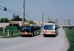 TTC 7339 and 7221 (bishop71701) Tags: rts d40lf kiplingstn ttc bus