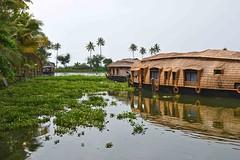 Kumarkaom House Boat - Kerala (anindya55) Tags: kerala kumarakaom houseboat nikond5100 nikon1855mmf3556afsvrdx kitlens landscape india tourism alleppey allapuzah aquajumbohouseboat backwaters keralabackwaters