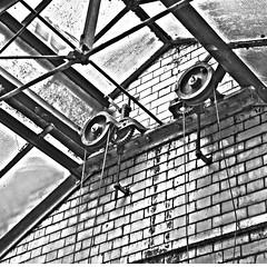 Manor Court Orangery_HDR2 (stevehannan) Tags: school england urban blackandwhite abandoned window glass monochrome lines architecture peeling paint decay urbandecay photojournalism eerie historic creepy urbanexploration haunting derelict hdr dilapidated rundown trashed boardingschool pulleys urbex steelwork crookham brekshire crookhamcourt crookhammanor crookhamschool