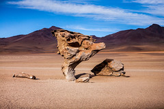 Bolivia - Rock formations in the desert