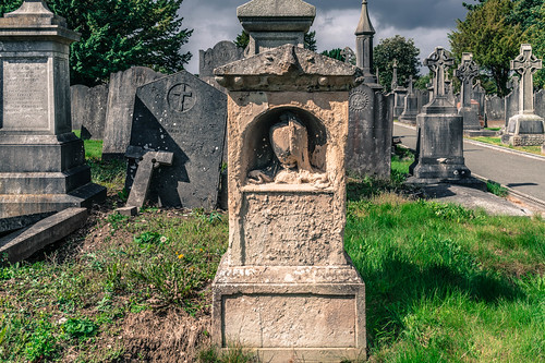 GLASNEVIN CEMETERY [MY FIRST DAY USING THE NEW SONY A7RMkII] REF-107422