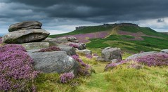 Storm Clouds Over Higger Tor (gavsidey) Tags: heather derbyshire higgertor hathersagemoor watecumjollydale