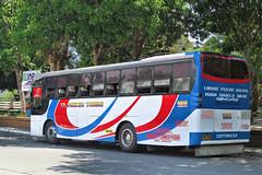 Tajardon Tours 1114 (III-cocoy22-III) Tags: city bus philippines sur vigan ilocos tours laoag norte minibus 1114 batac tajardon