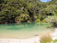 264 - Medlands Beachs à Abel Tasman