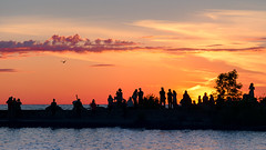 wings (JimfromCanada) Tags: light sunset sky people orange cloud lake ontario canada bird water silhouette evening fly nikon waterfront seagull flight wing free wave attention portelgin d800 jimsmith jimfromcanada