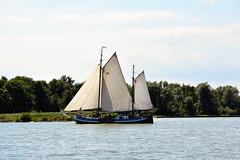 Mallejan (John A King) Tags: sail barge sprit zuiderzee mallejan