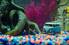Aquarium-5 (sleepr56) Tags: pet fish bus water vw lost aquarium neon vampire fresh sword phish tetra freshwater neontetra platti platty fishofflickr vampiresword