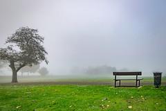 bench (Steve J Cottis) Tags: park fog bench dartford abigfave tokina1116mm28 brooklandslake nikond5300