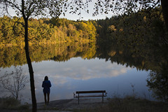 Watching the Art of Nature (Explore) (Rudi Pauwels) Tags: autumn lake reflection fall water colors silhouette yellow clouds reflections bench göteborg nikon sweden schweden gothenburg sigma frame sverige delsjön sigma1850mm 1850mm d7100 nikond7100 lakedelsjön