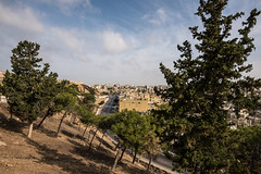 DSC_1715 (vasiliy.ivanoff) Tags: voyage trip travel tour amman jordan journey traveling neareast