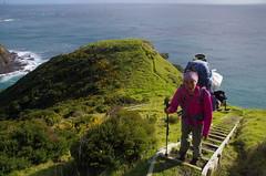 Hard walk up these coast path steps (4seasonbackpacking) Tags: winter sea newzealand walking hiking steps step backpacking nz southisland toots northland ta tramping capereinga coastpath nobo achara teararoa teararoatrail 4seasonbackpacking fourseasonbackpacking tatrail