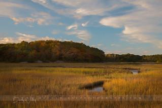 North shore marsh - explored