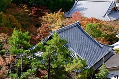 圓光寺 Enko-ji Temple (ELCAN KE-7A) Tags: autumn leaves japan temple kyoto pentax 京都 日本 紅葉 2015 enkoji ペンタックス 圓光寺 k5ⅱs