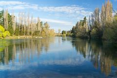 Clutha River near Roxburgh ll (fate atc) Tags: blue newzealand reflection water river landscape still poplar calm willow nz southisland dumbarton cluthariver sonya99 nearroxburgh