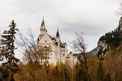 Neuschwanstein Castle (T Le) Tags: wood tree castle forest germany landscape bavaria nikon scenery europe tour 5100 neuschwanstein viator d5100