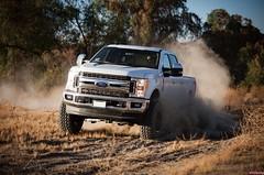 Pro Comp Just Released 2017 Ford F250/F350 Super Duty Kits (vividracing) Tags: 4x4 awd bodykit coils f150 f250 f350 ford liftkit offroad pickuptruck procamp smittybilt spacers superduty transamerican trucks wholesale