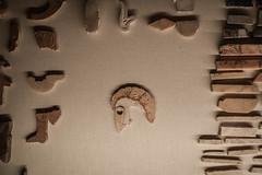 Antico romano (Luca Di Ciaccio) Tags: roma foriepalatino foriimperiali