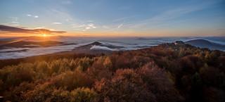 Sonnenaufgang auf dem Hochwald