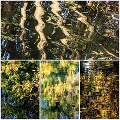 Autumn Reflections (andythekeys) Tags: england uk surrey guildford canal colours warm water montage leaves reflection trees
