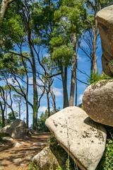 Sintra, Portugal (Nic Ky) Tags: sommer sinatra portugal landschaft bume steine ausblick wandern