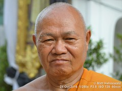 2015-11a Buddhist Monks in Thailand (28) (Matt Hahnewald) Tags: facingtheworld photography photo image outstanding favourite superior excellent magnificent nikond3100 nikkorafs50mmf18g primelens 50mm 43aspectratio horizontalformat closeup portrait portraiture street headshot enface frontview orange outside colour worldcultures cultural character personality realpeople human humanhead humanface humaneyes facialexpression eyecontact bareheaded consent empathy rapport respect encounter relationship dignity travel religion buddhism buddhistmonk orangerobe saffronrobe shavedhead theravadabuddhism seniormonk tradition celebration oneperson male adult posing attitude authentic powerful incredible determined focused temple bangkok thailand watprayurawongsawas watprayoon matthahnewaldphotography wanpiyamaharajday