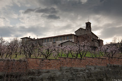 la primavera  vicina (Clay Bass) Tags: 24105 saluzzo bracketing canon5d clouds convent flowers hdr trees tripod