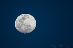 55-South_Africa-2016 (Beverly Houwing) Tags: almostfull blue bright craters moon moonrise sky southafrica telephoto