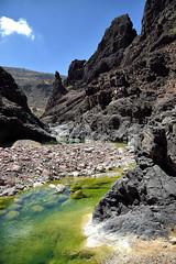 Algea river at Wadi Dirho 1 (indomitablemachine) Tags: dirhor wadi algea canyon firmhin green island river socotra yemen hadhramautgovernorate ye