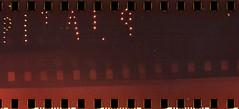 arisan02 (vinskatania) Tags: colornegative bandunganalog colornegative800 cn800 lomo film filmphotography lomographysprocketrocket sprocketrocket