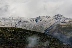 wild beauties (photographISO) Tags: tzoumerka ioannina greece