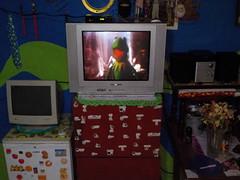 Viendo la TV analgica, la programacin digital (Xic Eseyosoyese (Juan Antonio)) Tags: viendo la tv televisin analgica grande de transistores diodos ctodos etctera programacin digital rana rene kermit nikon coolpix s33 mafalda todo varias cosas convertidor gebox decodificador daewoo lg