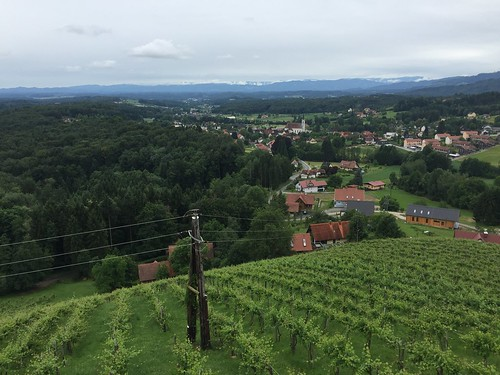 2016.07.03 116 Bad Gams Weinbergweg
