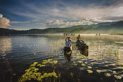 Tamblingan lake morning view (Jag Motoyu) Tags: jukung bali balitoday baliguru indonesia indonesiabeauty travelling travel travelindonesia luxurytravel beautifuldestination jagmotoyu stockphoto nikon danautamblingan danau tamblinganlake budayabali budaya jalanjalan liburan holiday