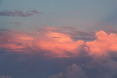 Cotton Candy Clouds (PeaTree Creations) Tags: clouds cottoncandyclouds sky weather florida skyscape pinkclouds puffyclouds debrapetrephotography peatreecreations