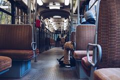 Tram 44 (tanjatiziana) Tags: belgium brussels bruxelles tervuren tram 44 publictransit
