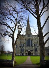 Wood framed building! (SteveJM2009) Tags: salisbury cathedral sun light trees spire framed wiltshire uk november 2016 stevemaskell explored