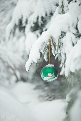 christmastoy (olli_loo) Tags: christmas christmasdecorations christmastoys christmastree toy snow spruce manual manuallens manualfocus nature naturephoto natural softlens softbokeh softness softfocus winter winterdecor wintertime winterforest coldweather helios40 helios 85mm