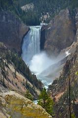 Lower Falls (afagen) Tags: river waterfall nps yellowstonenationalpark yellowstone wyoming nationalparkservice lowerfalls yellowstoneriver artistpoint grandcanyonoftheyellowstone
