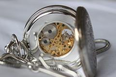 What is ticking inside a watch? (Szabi Szasz) Tags: macro mechanical steel watch wheels copper bolts cogs ticktock macromonday