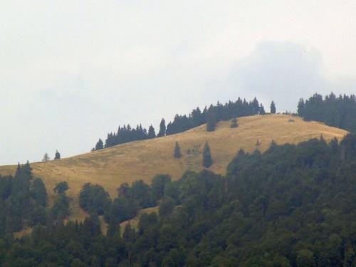 Muncelu (1318 m), Máramarosi-havasok / Munţii Maramureşului, Romania / Ukraine