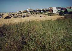 Punta del Diablo (GBRSH) Tags: uruguay playa punta diablo