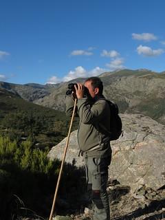 Spain Ibex Hunt & Driven Partridge Hunts 41