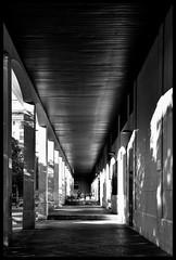carrera - race (amargureiro) Tags: street light urban blackandwhite white black blancoynegro children candy streetphotography niños urbana monocrome palmademallorca d80 nikond80 tamron2870adaptall2