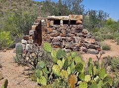 Saguaro National Park (Jasperdo) Tags: arizona history nationalpark nps ccc saguaro nationalparkservice saguaronationalpark newdeal civilianconservationcorps suspicnicarea