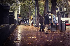After the Rain (TMimages PDX) Tags: road street city autumn people urban leaves rain buildings portland geotagged photography photo image streetphotography streetscene sidewalk photograph pedestrians pacificnorthwest avenue vignette fineartphotography iphoneography