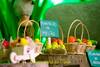 FAZENDINHA DO TULIO 2015 FINAL-37 (agencia2erres) Tags: aniversario 1 infantil festa ano fazenda fazendinha
