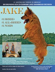 Jake for National