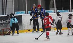 Profis der Koelner Haie bringen Kinder zwischen 5 u. 9 Jahren das Eishockey spielen naeher. .Datum: 19.12.2014.Foto: Klaus Michels EXPRESS Koeln.Abdruck nur gegen Honorar und Beleg.EXPRESS Syndication, Amsterdamer Strasse 192, .Neven DuMont Haus, 50735 Ko