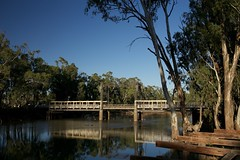 Barham Koondrook Bridge (David Redfearn) Tags: 100v10f