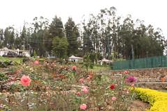"Jardines y casas en el Lago Sochacota • <a style=""font-size:0.8em;"" href=""http://www.flickr.com/photos/78328875@N05/23793153335/"" target=""_blank"">View on Flickr</a>"
